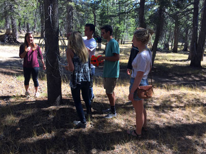 SNU Tahoe's 自然资源管理 class takes a census of high country trees