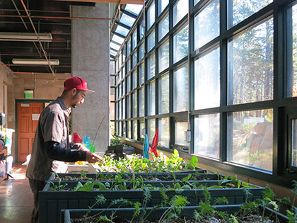 sustainability-tces-greenhouse-student-planting-starts-420