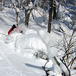 Dave Wadleigh, Business major, skis powder in the back country